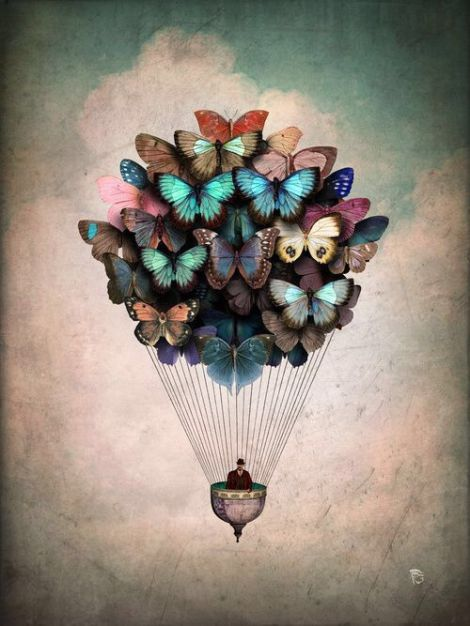 butterfly hot-air balloon